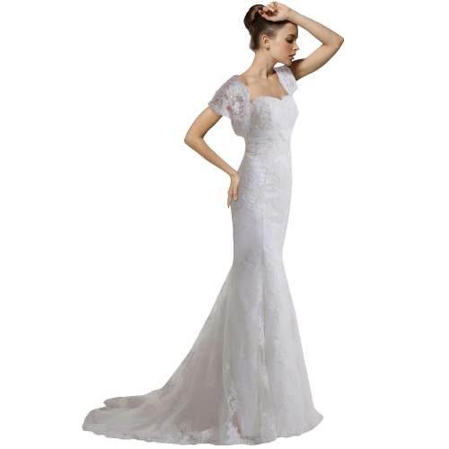 Luxury vintage capped  wedding dress